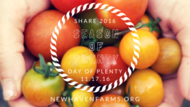 Season of Plenty